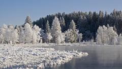 DSC_0207 Givre sur le lac du Trouillot