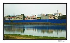 long blue fence ...