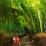 Two Women in Kyoto