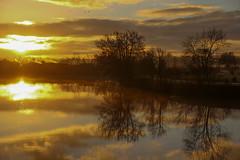 reflets dorés sur la Saône - golden reflections on Saône river