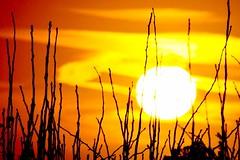 sunrise/sunset 2019