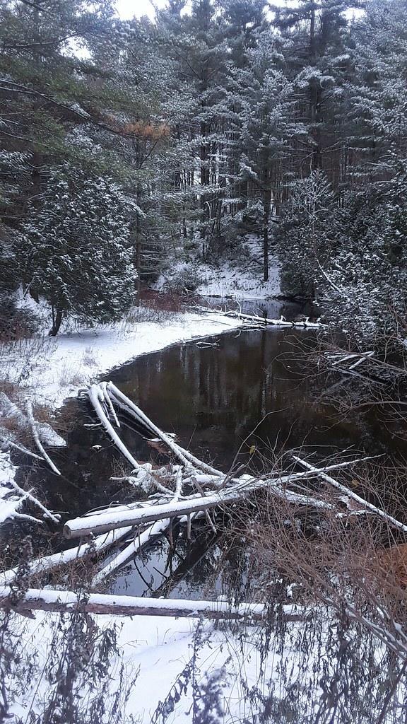 Snow in early November