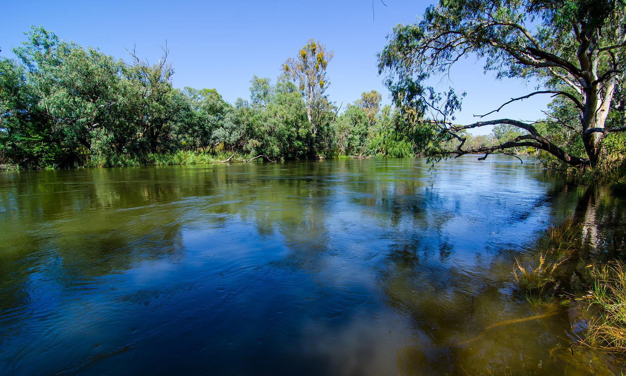 Murray-River-Albury