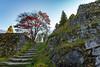 Photo:紅葉と岩村城跡 (Iwamura Castle Ruins) By kzy619