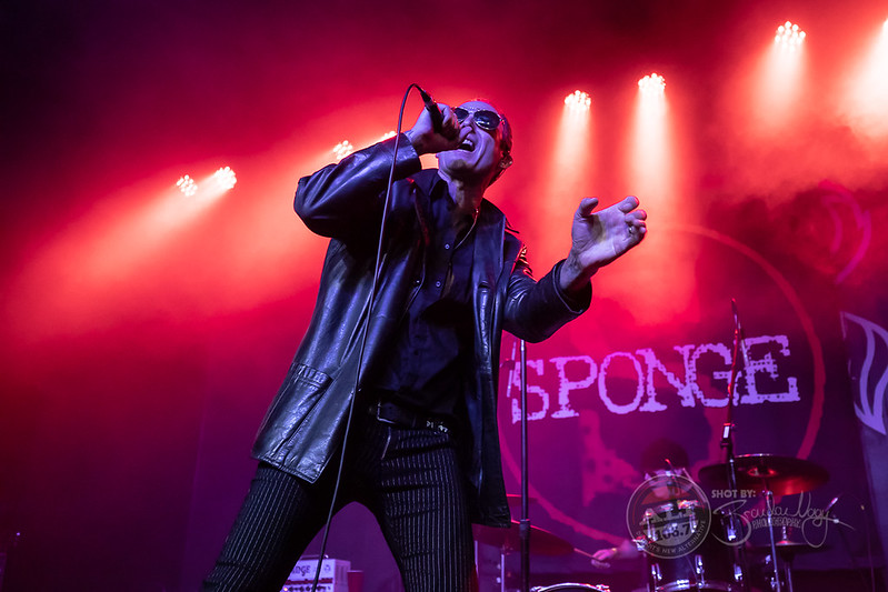 Sponge | 2018.11.21