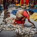 VANAKBARA : LE TRAVAIL DES FEMMES
