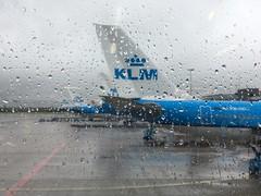 Ready for boarding.