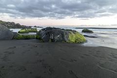 plage de bois noir aux avirons