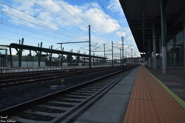 Nos hacemos viejos viendo pasar trenes solo de ida desde nuestra propia estación.