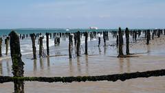 Fort Boyard Beyond The Mussels