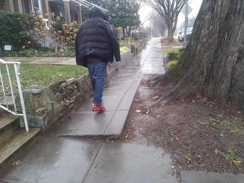 Sidewalk uplift, Kansas Avenue NW