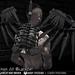 Razor/// Apoc Wings - BlackOut