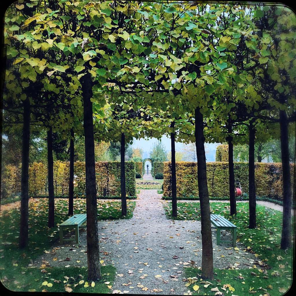 365_Day 319 Formal Garden