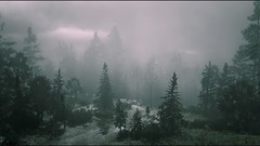 Red Dead Redemption 2_20181201163744