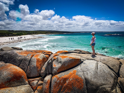 79/100x Bay of Fires walkers - Explored