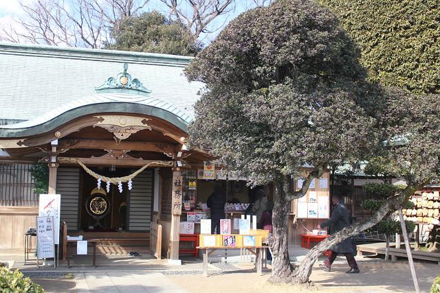 ashikagaorihime043