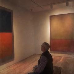 Looking at Art, Washington DC