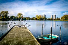 Prins Hendrikpark, 's-Hertogenbosch, the Netherlands