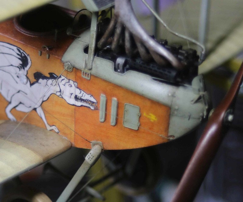 1/48 Albatros C. III   Crocodile et Dragon - Page 2 32864789028_a43b1113fb_c