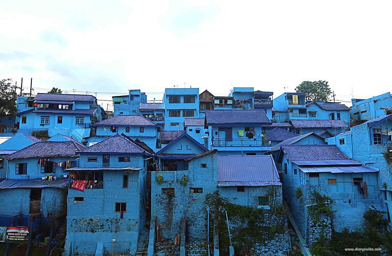 kampung arema biru 1
