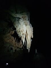 Grotte de Clamouse_152604