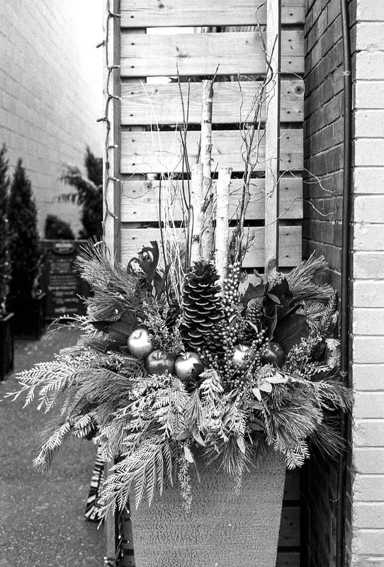 Christmas Planter_