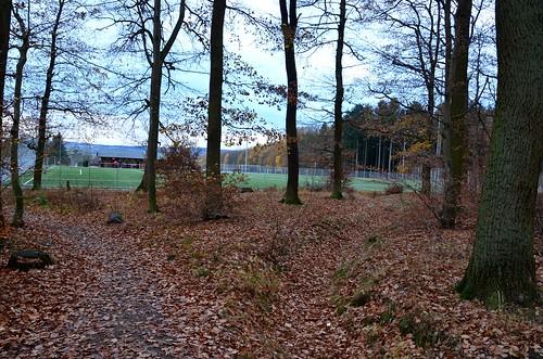 Alemannia Adendorf 1:4 SV Wormersdorf II