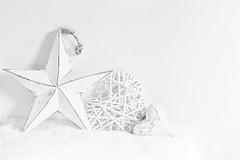 353/365: Winter whites