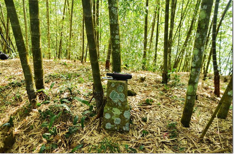 榮華山西峰冠字補中(28)的森林三角點(Elev. 750 m)