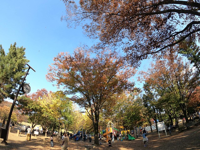 GoPro航空公園