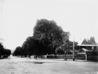 Residential street in the Brisbane suburb of Kangaroo Point, 1935