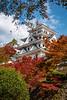 Photo:郡上八幡城 (Gujo-Hachiman Castle) By kzy619