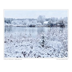 First Snow, Chalmers Pond