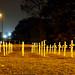 Remembrance - Aldridge   PB151802sm