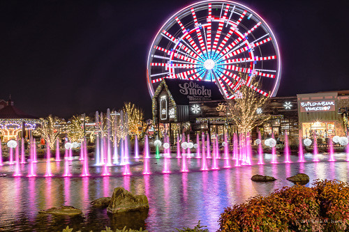 A Fountain and a Ferris Wheel