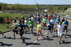 Dubnový půlmaraton v Plzni nabízí i kratší běhy a láká týmy