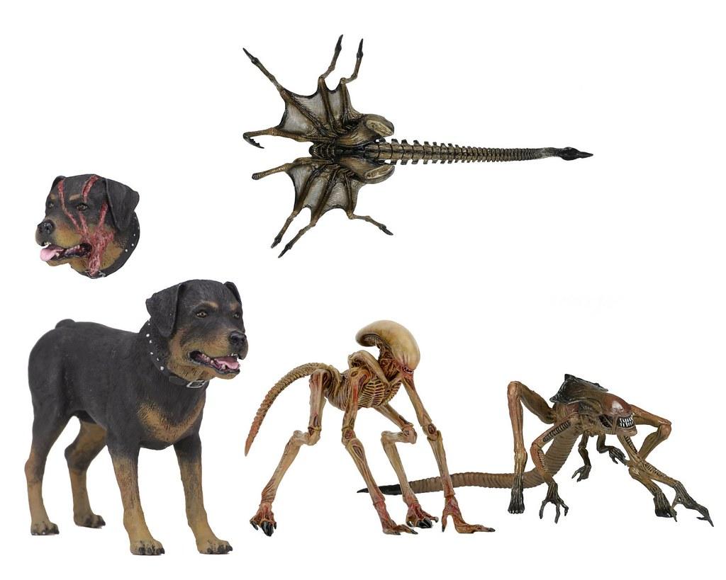 不...不要這樣欺負狗狗啦~ NECA《異形3》生物組合包 Creature Pack