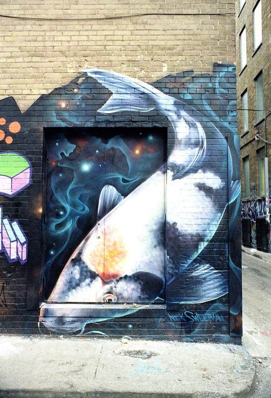 Alleyway Fish