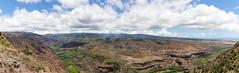 Waimea Canyon State Park view point pano Hawaii