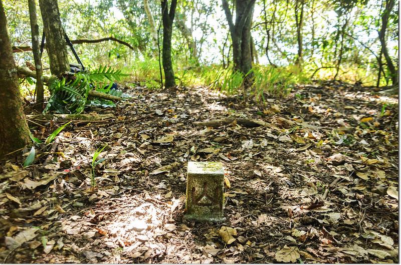 塔羅留山(南他果晏山)冠字補近(13)的山字森林三角點(Elev. 1360 m) 2