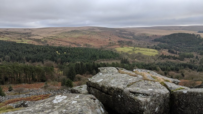 Lower Leather Tor