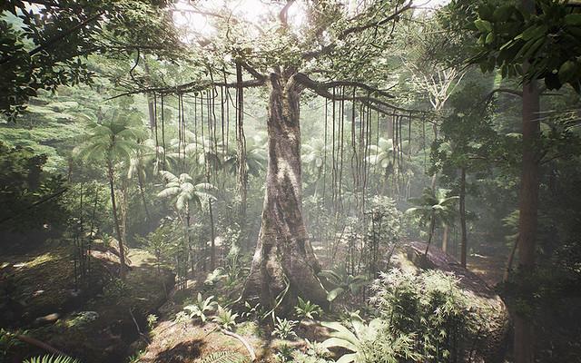 tree-still-blog