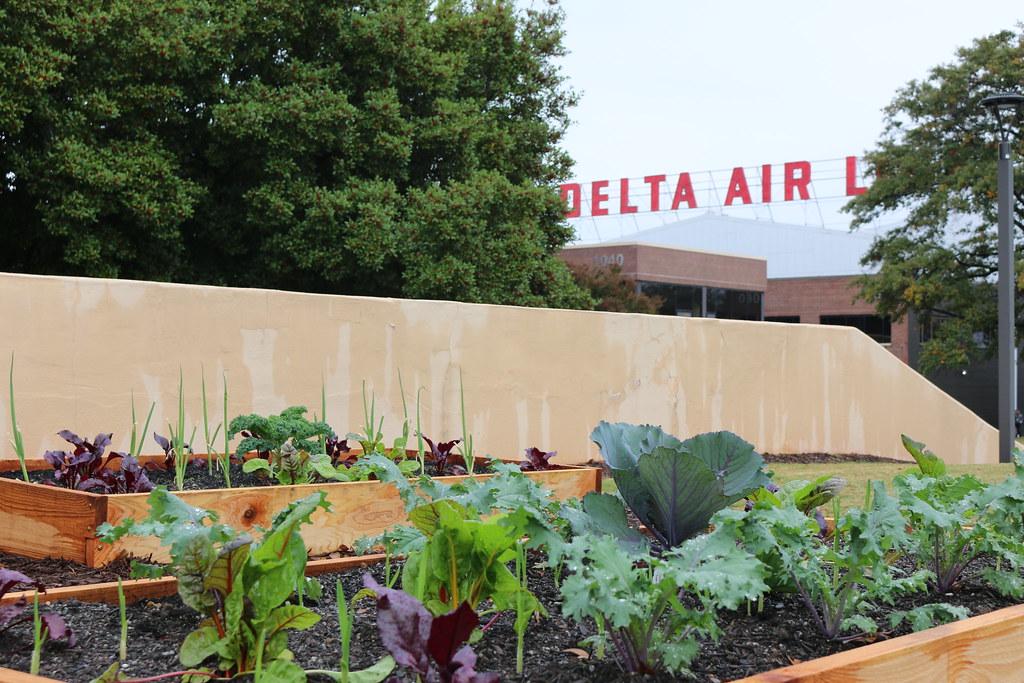 Delta's Edible Campus Gardens