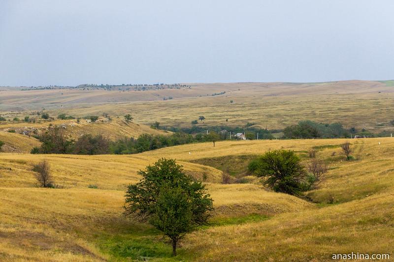 Степной ландшафт, Ростовская область