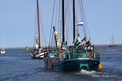DSC00393 - Seehundbank