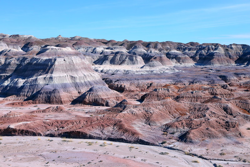 IMG_0091 Red Basin