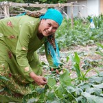 Farmer managing her kitchen garden in rural Tajikistan.