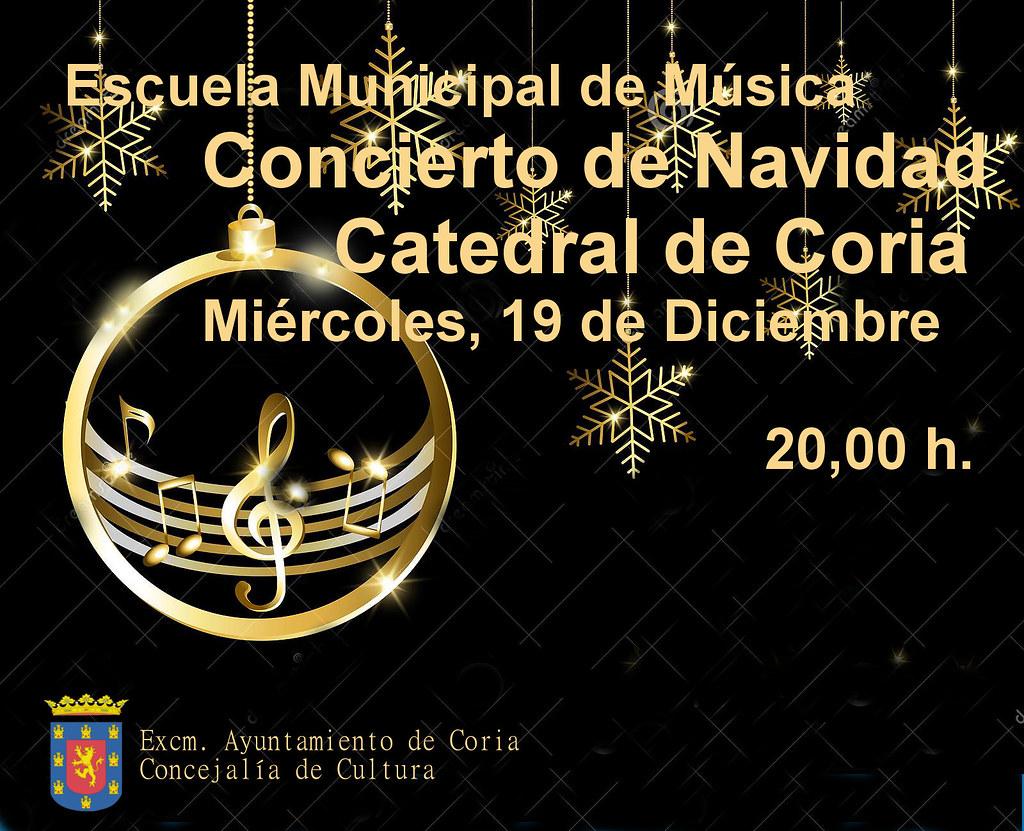 Los alumnos de la Escuela Municipal de Música ofrecerán su tradicional Concierto de Navidad el día 19 de diciembre