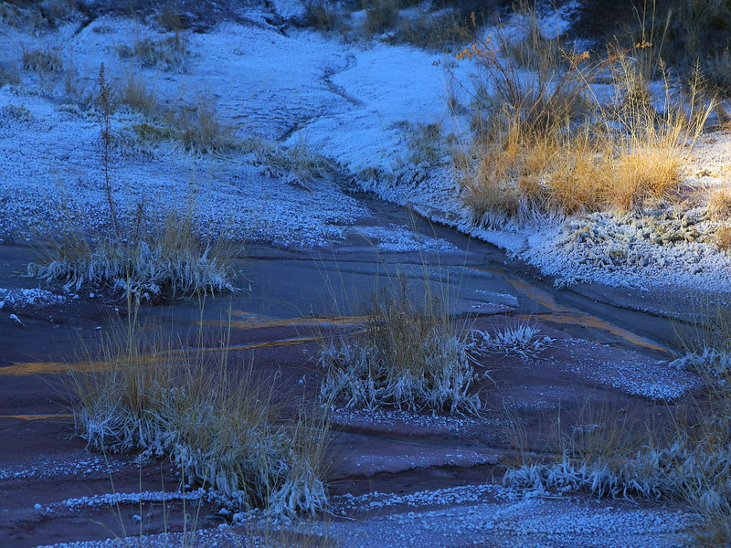 IMG_4835 Water in Painted Desert