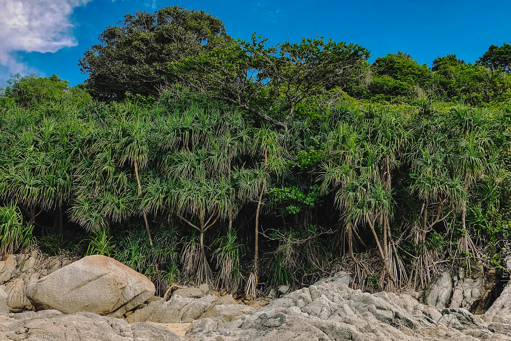 nai-harn-beach-phuket-най-харн-пхукет-49